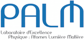 Logo palm signature