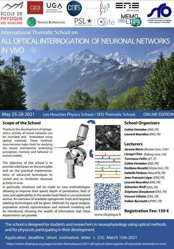 Optical neuronal online 2021 05